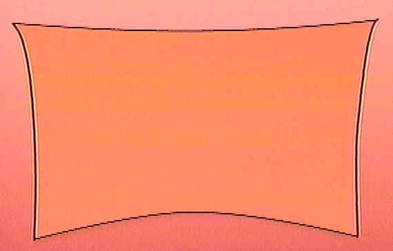 Peau du prépuce mise à plat