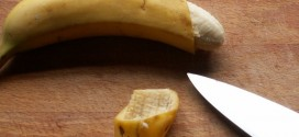 Circoncision : origines, acceptabilité et prévention du SIDA
