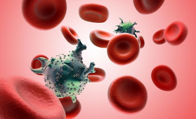 Sida et globules rouges