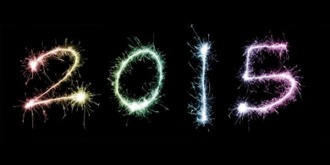 Droit au Corps: bilan de l'année 2014 et perspectives 2015