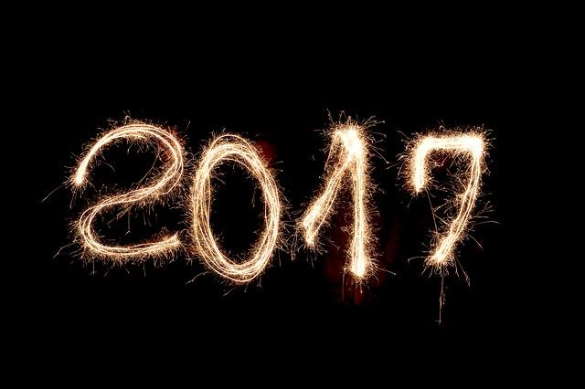 Droit au Corps: bilan de l'année 2016 et perspectives 2017