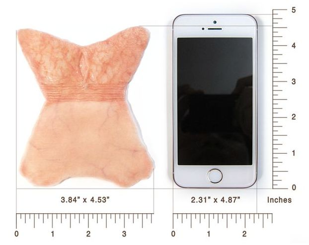 superficie specimen prepuce comparaison iphone