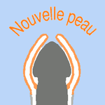 logo site nouvelle peau