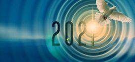 Droit au Corps : bilan 2020 et perspectives 2021